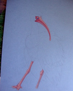 beak-legs