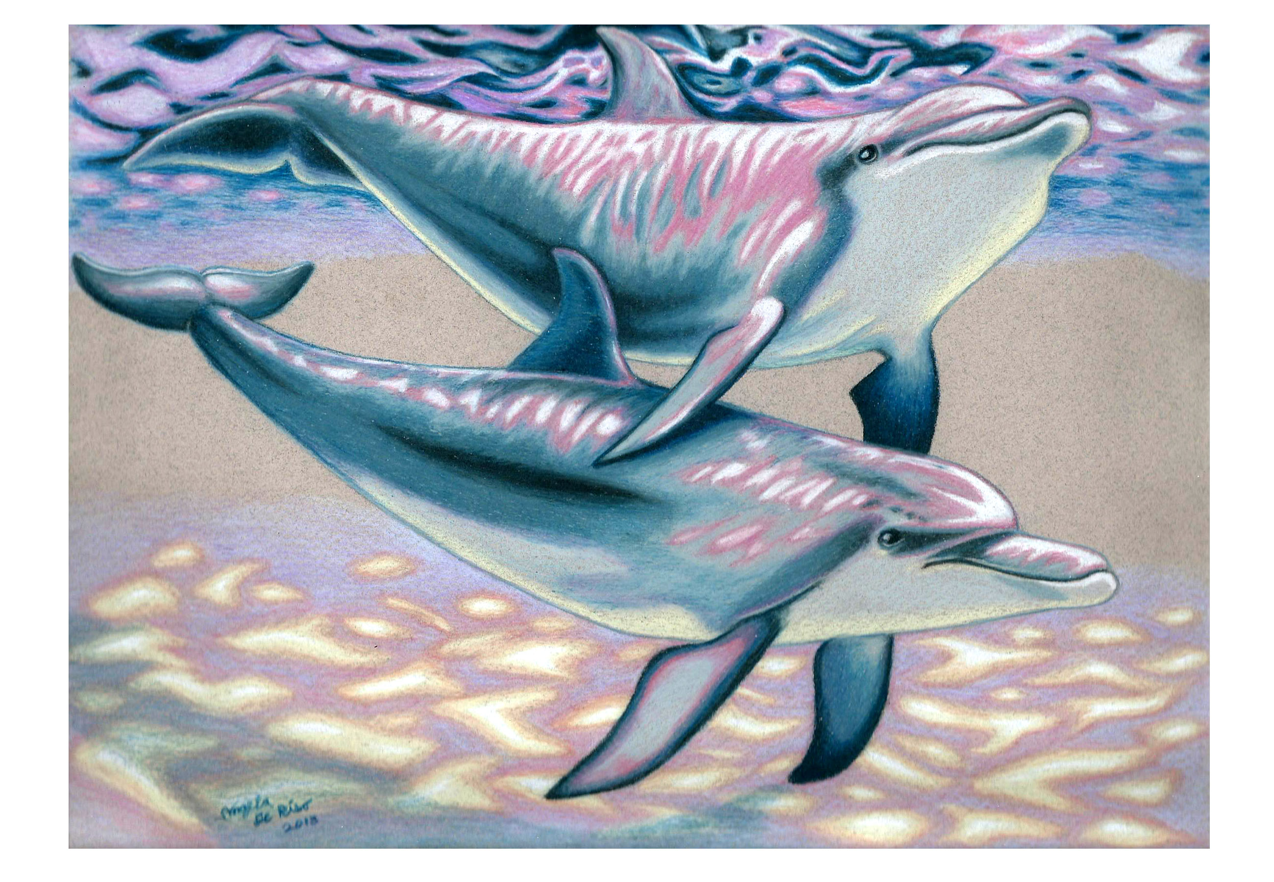 Dolphin Touch – Color Process | Art of Angela DeRiso