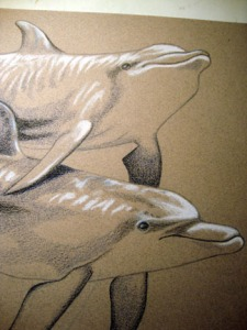 Dolphin Touch progress photo