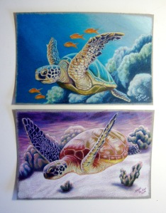 pair seaturtles