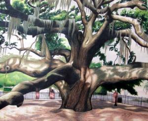 """""""Baranoff Oak"""""""