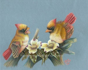 double-trouble cardinals