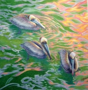 """Pelican Trio 14"""" x 17"""" on bristol board"""