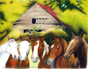 barn-horses