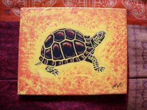 box-turtle1