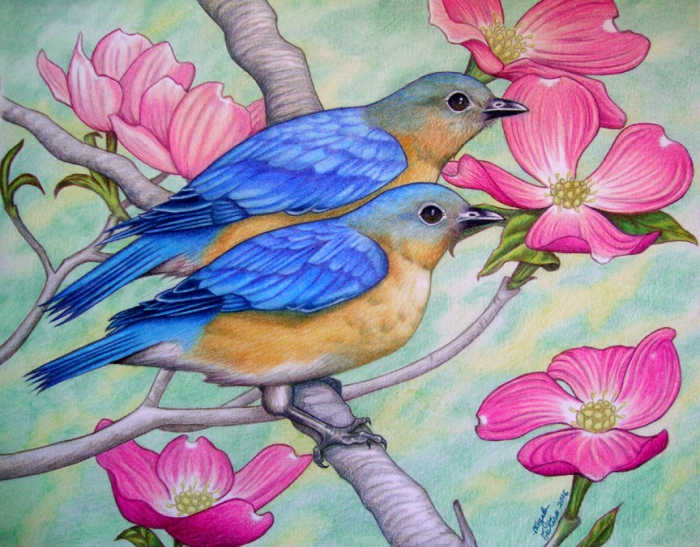 "Eastern Bluebirds 11"" x 14"""