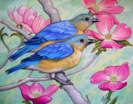 "Eastern Bluebirds 11"" x 14"" A mated pair of bluebirds (female in back, slightly more drab) hanging out in a dogwood tree full of pink flowers. I'd been wanting to do another pair of songbirds since I did the cardinals, so bluebirds were my first choice. I also knew I wanted pink flowers of some kind to compliment the blue plumage. The background is a muted blur of foliage. The first time I ever caught sight of a bluebird, it was a flash of brilliant blue at a bird feeder from far away. the only time I saw these birds up close was from a window near a birdhouse. While watching a female bring insects to a birdhouse where her chicks were, I noticed the females of the species are just barely different in color from males. The color combination of this species is very striking in person."