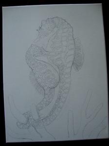 A seahorse pair