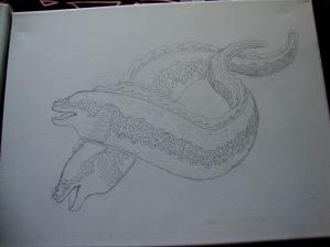 Moray Eels- Flotsom & Jettsom