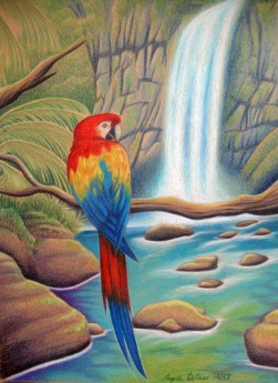 "Scarlet Falls 9"" x 12"" I challenged myself to do a more detail rich background for one of these beautiful birds. I had to use several reference photos to create the scene I wanted. I struggled a bit with the rocks behind the waterfall, and the rocks in the pool were a little more smooth textured than I intended. In the end though, the composition really made the piece complete."