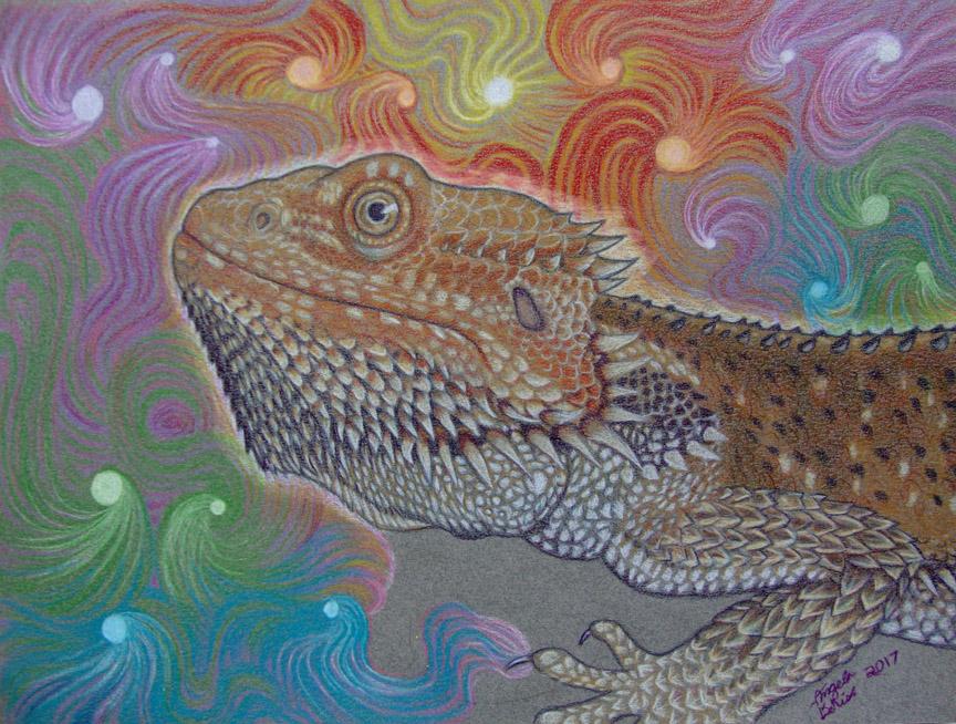 bearded dragon reptiles art fantasy colored pencil