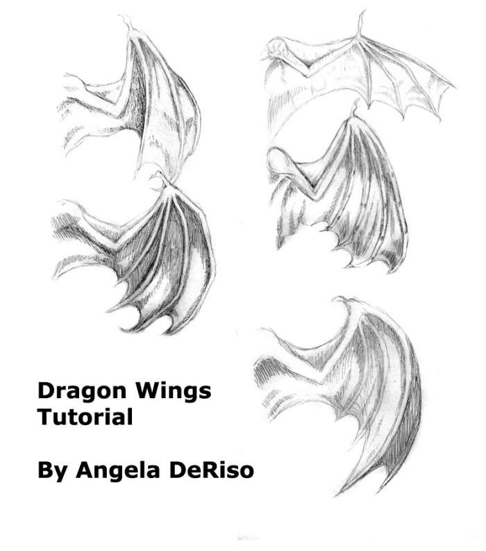 wing poses